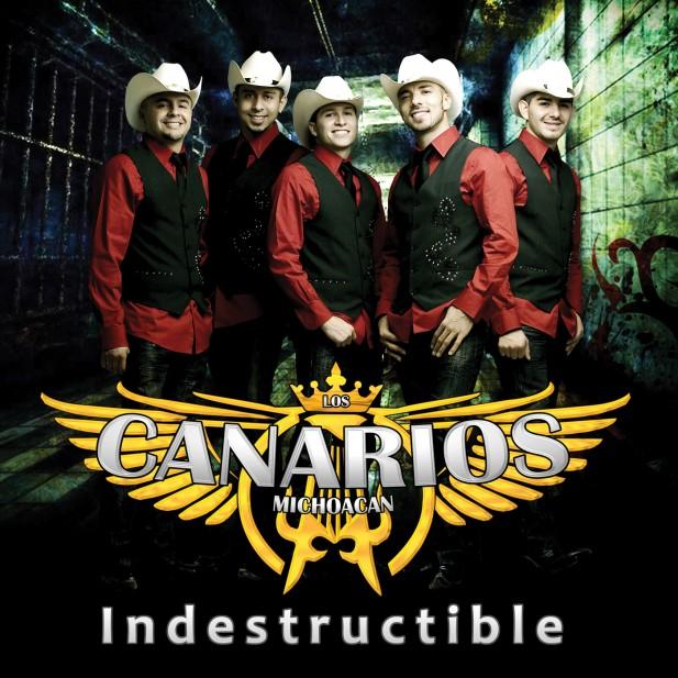 canariosdemichoacan