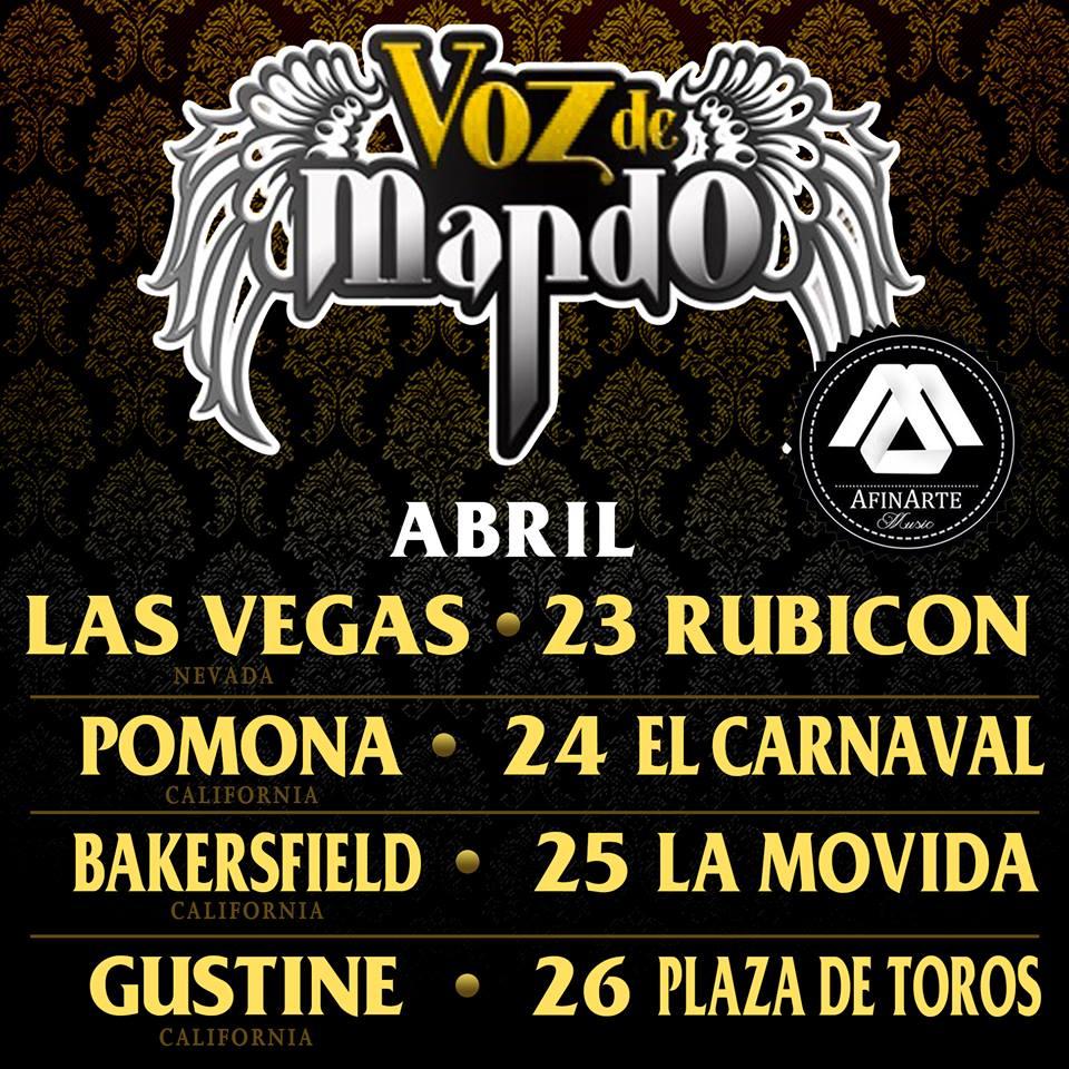vozdemandoAbril2015